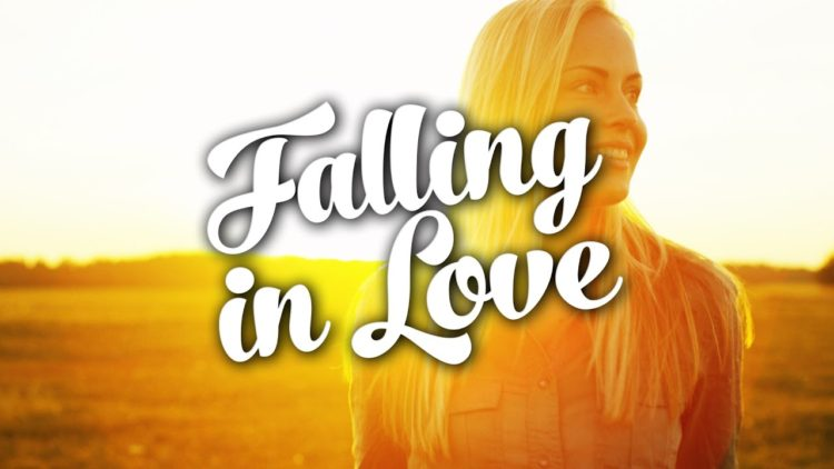 Dark Ride Brothers - Falling In Love - Album Cover